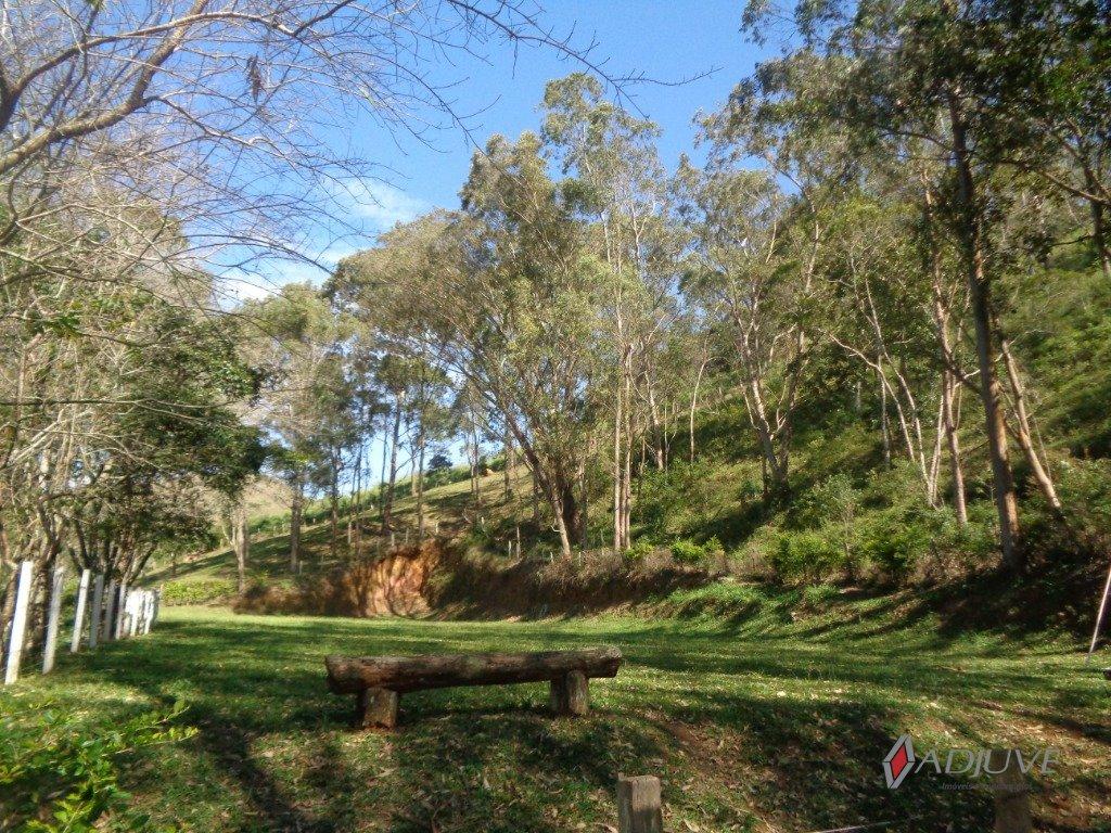 Fazenda / Sítio à venda em Vale das Videiras, Petrópolis - RJ - Foto 19