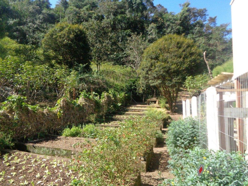 Fazenda / Sítio à venda em Vale das Videiras, Petrópolis - RJ - Foto 46