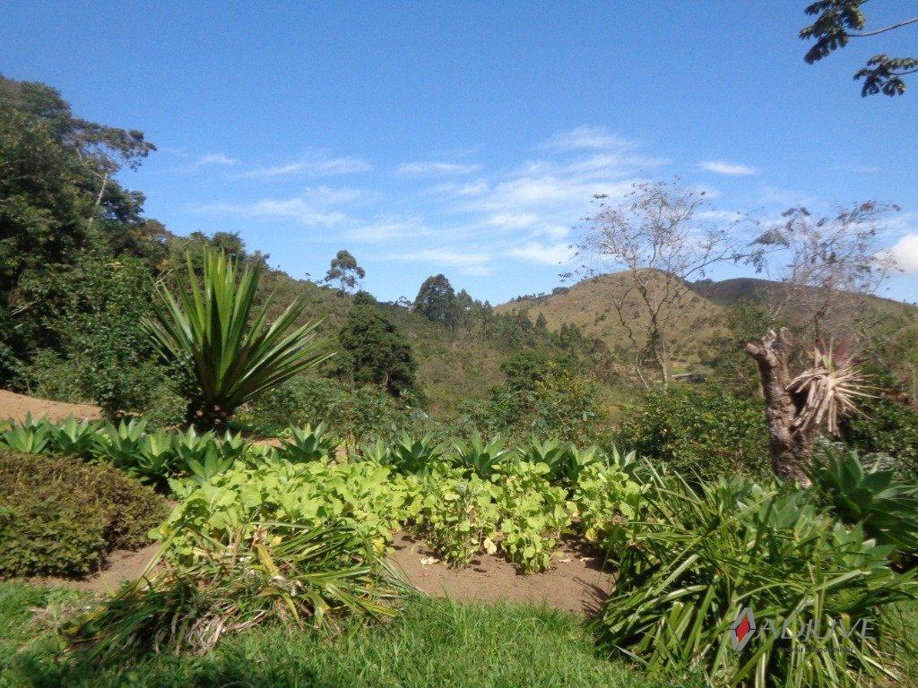 Fazenda / Sítio à venda em Vale das Videiras, Petrópolis - RJ - Foto 47